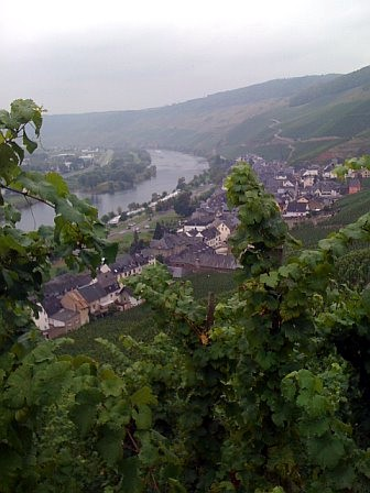 the Mosel River is in the background