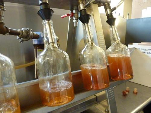 filling bottles